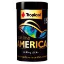 Tropical Soft line America 100ml (bâtonnets)