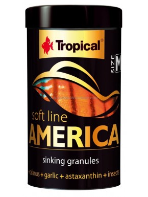 Tropical Soft line America