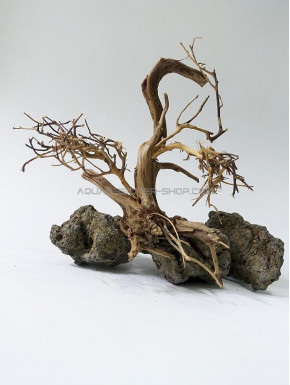 Bonsai aquarium ADS B01
