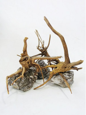 3 racines nano forest wood lot 1