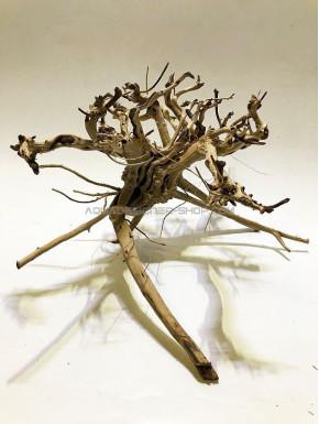 Busshu roots L03