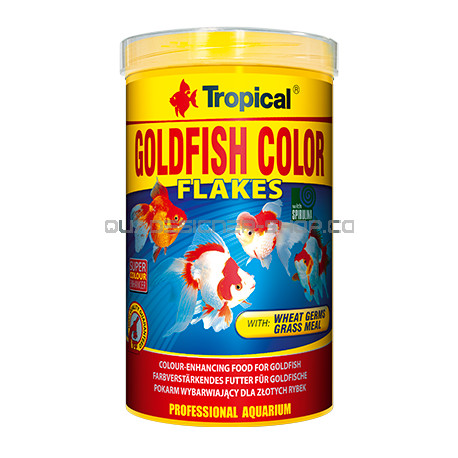 Goldfish color tropical 250ml nourriture poisson rouge for Goldfish nourriture